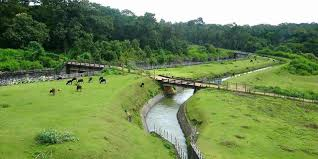 Coorg Tour Package From Kolkata