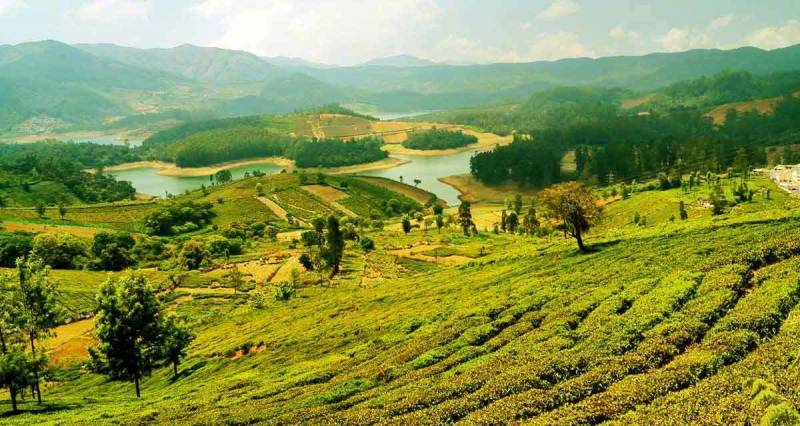 4N3D  Enchanting Ooty Tour