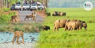 Uttaranchal Couple Trip