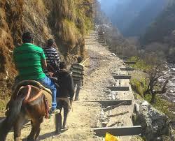Yamnotry Yatra 3 Days Packageby 8 Seater Tevera Non Ac