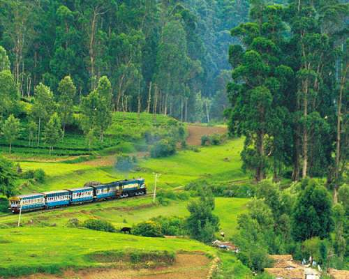 Ooty Tour Package From Trichy - Channai - Tamilnadu. 2 Nights / 3 Days