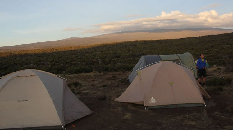 8- Days -Lemosho Route-Mount Kilimanjaro Trekking