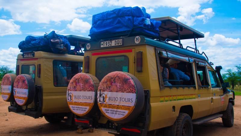3 Days Tanzania Lodge Safari
