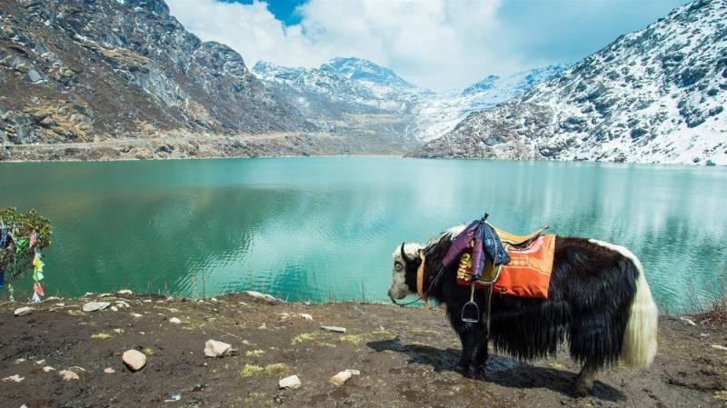 06 Nights & 07 Days Gangtok, Pelling & Darjeeling Package