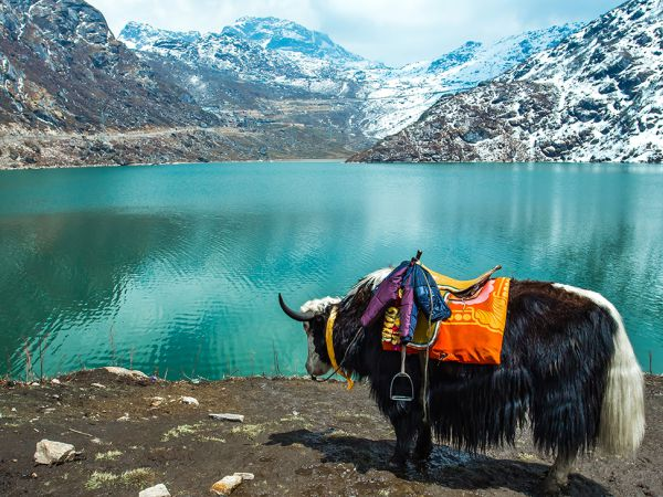 Sikkim Package 8N 9D