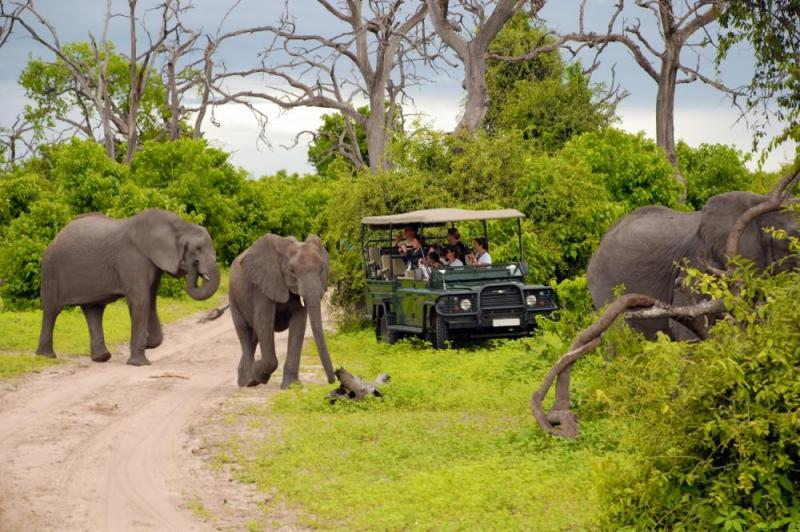 Exclusive Kenya Best Safari Tours Itineraries Package