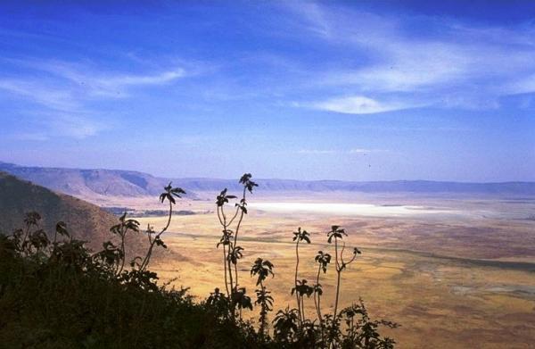 Lake Manyara - Ngorongoro - Tarangire Package