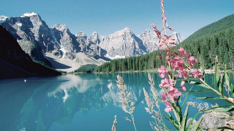 Mountain And Peak Glacier Tour