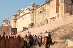 Rajasthan Palaces & Forts Experience Tour