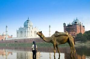 Taj & Raj Experience