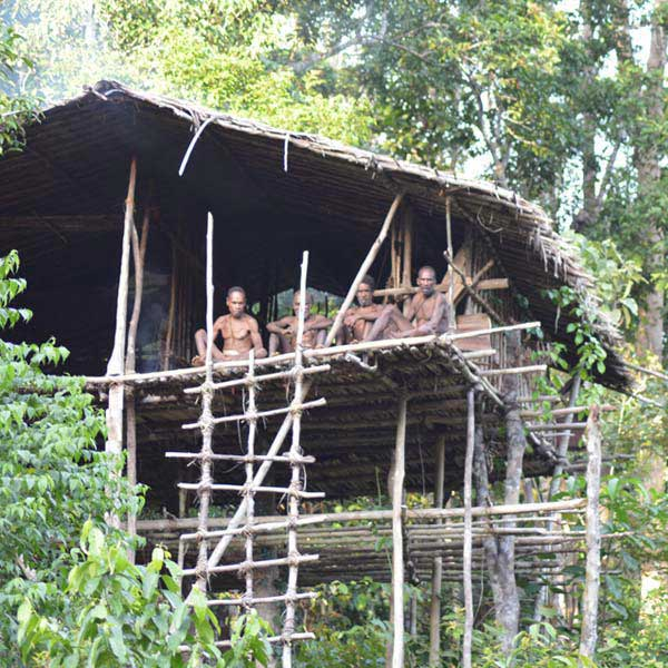 Korowai Tribe Adventures Package