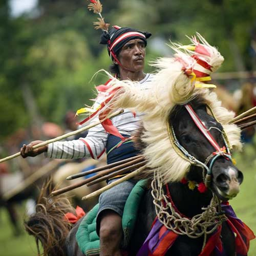 Sumba Traditional Tour 5 Days Package