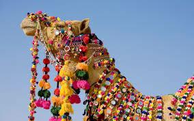Splendid Rajasthan 6Night/7Days Tour