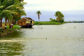 Kerala Backwater Tour 07 Night / 08 Days