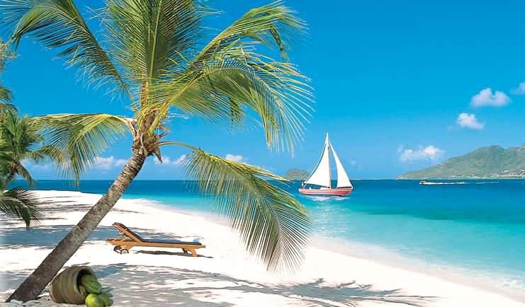 8 Days Caribbean Tour