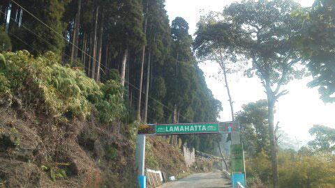 Lamahatta Tour
