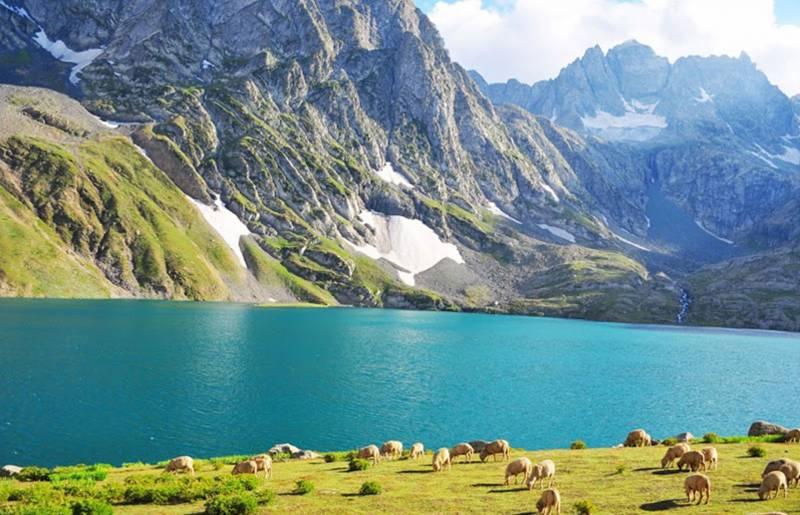 Taste Of Kashmir Tour