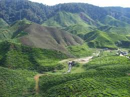 North East India Nagaland Tour
