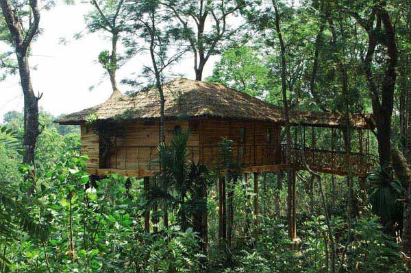 Heritage Kerala Tour With Tree House