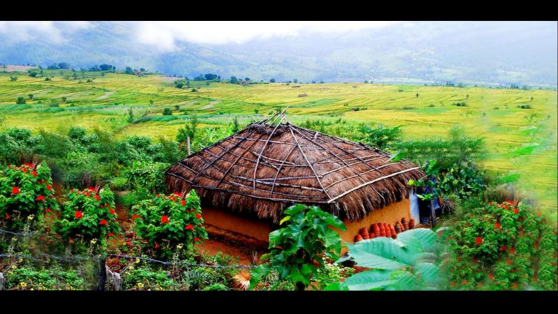 Feel The Nature And Feel Kerala Tour
