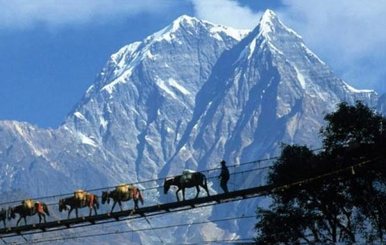 Darjeeling Gangtok Pelling Classic By Train (9 Days 8 Nights)