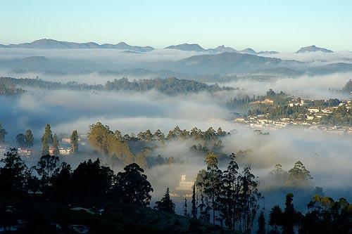 Mysore - Ooty- Tour