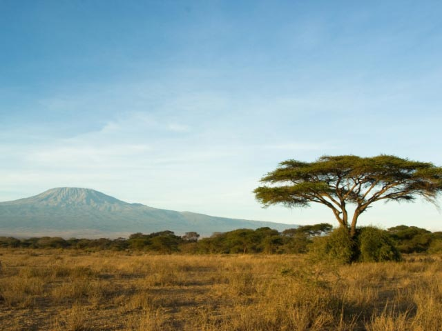 Trekking And Walking Tour - East Africa Mountain Trekking