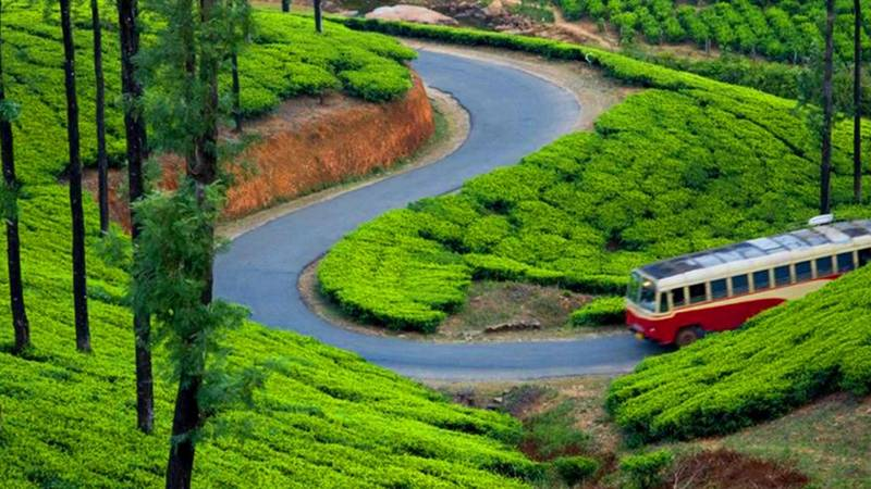 Munnar Honeymoon Package Ex Chennai 2 Nights 3 Days