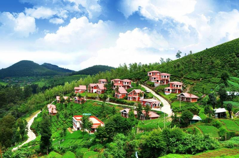 Ooty Honeymoon From Chennai Package