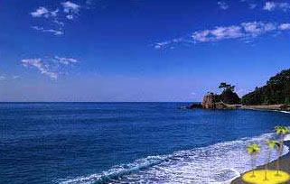 Cochin Beach Tour