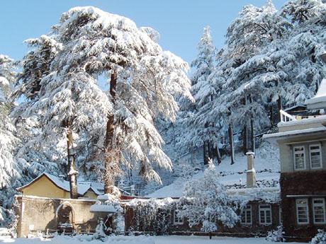 Exotic Shimla Manali Tour