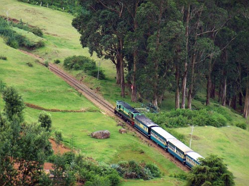 Bangalore Coorg Mysore Ooty Tour