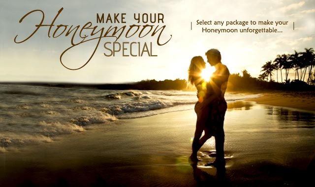 Honeymoon Package (Golden Kerala With Elephant Ride)