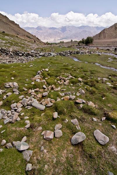 Darcha Lamayuru Trekking Tours