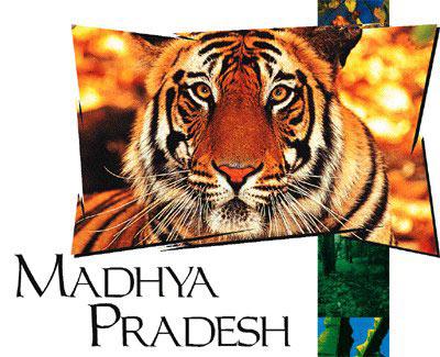 The FusionMadhya Pradesh  ( Pachmarhi-Kanha-Jabalpur-Khajoraho)