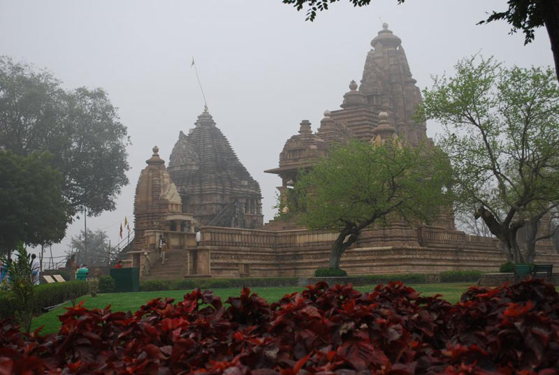 Wildlife Special With Khajuraho Tour