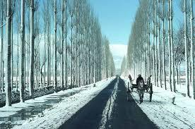Amritsar - Patnitop - Srinagar - Pahalgam - Jammu Honeymoon Tour