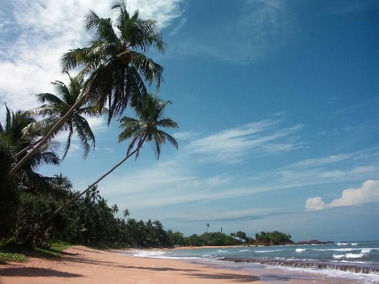 Singapore Tour Packages From Colombo