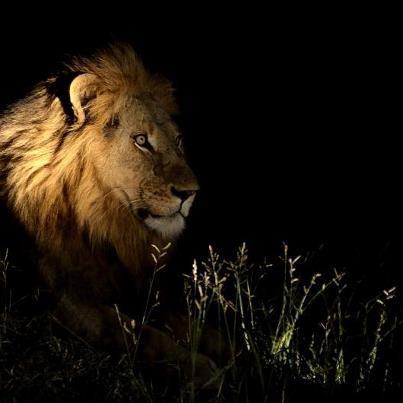 Classic Safaris Amboseli - Mt Kenya - Samburu Game Reserve Tour