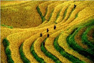 Best Of North Vietnam Adventure Tour