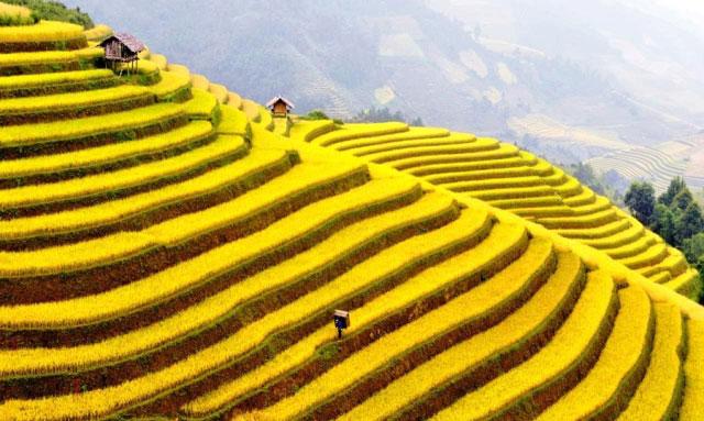 North Vietnam Ultimate Road Trip
