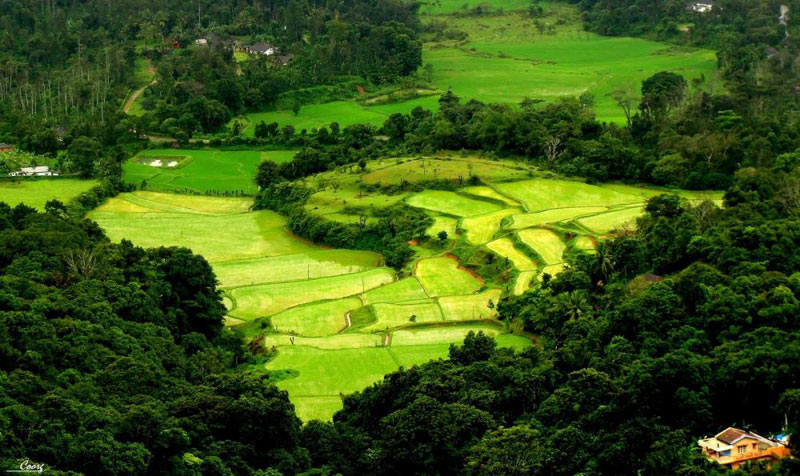 Coorg  Package - 5 Night 6 Days