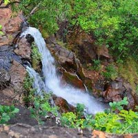 Magical Satpura Tour