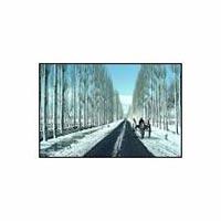 Special Kashmir Tour