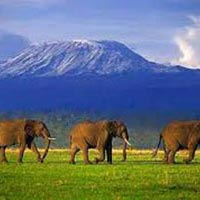 Climbing Mount Kilimanjaro Via Machame Route Package