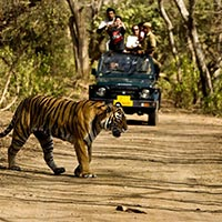 Jim Corbett With Sparkling Nainital Tour