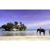 Scenic Comfort Tour Sri Lanka