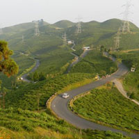 Mountain Biking in Darjeeling Tour
