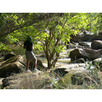Adventure Tour - Ghana