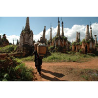 Destination of Natural Landscaping Tour